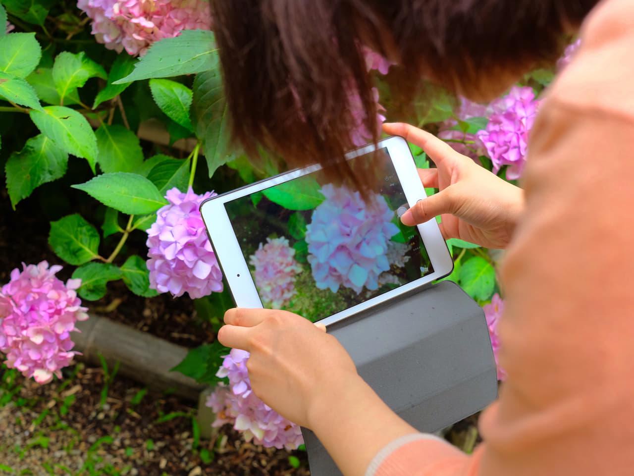 ipad カメラ 写真
