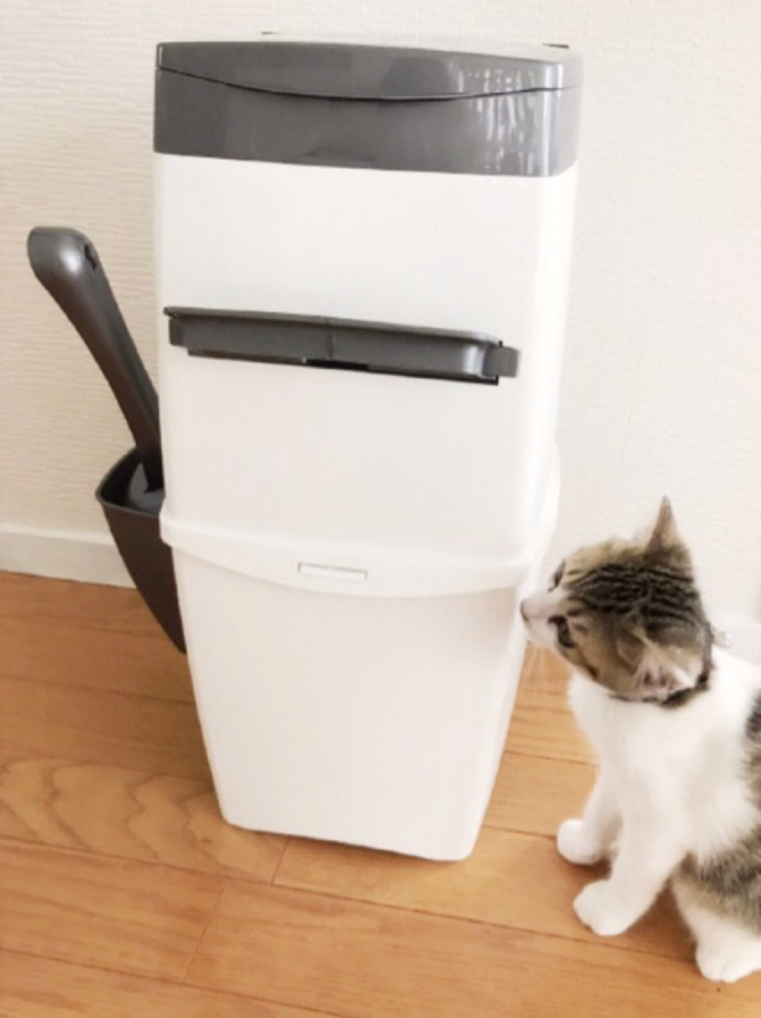 猫 ゴミ箱