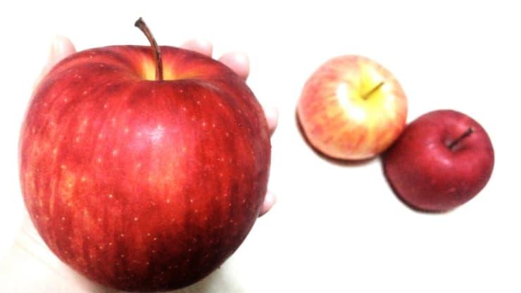 大きなふじりんご