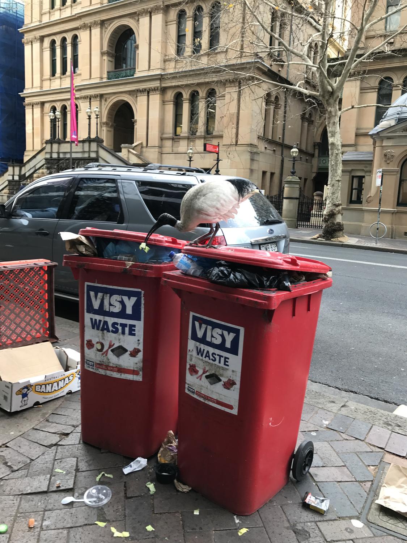 ゴミ箱消臭剤