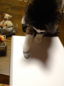 猫と練り消し