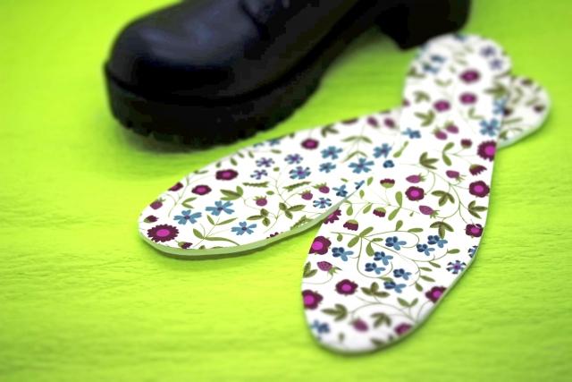靴とインソール